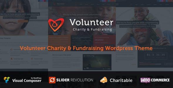 Volunteer Website Templates from ThemeForest
