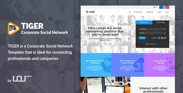 professional social network templates from themeforest