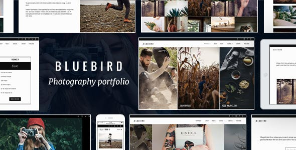 professional photographer website templates from themeforest