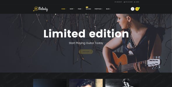Instrumental Music Website Templates From ThemeForest - Music website templates