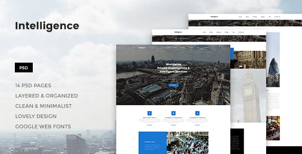 Business intelligence website templates from themeforest intelligence individual corporate investigations psd template wajeb Choice Image