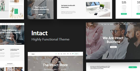 Image result for 7. Intact wordpress theme
