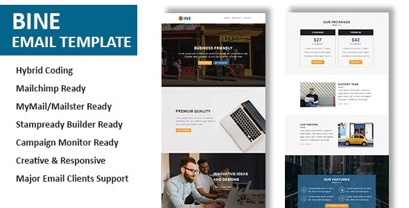 Office Newsletter Templates From ThemeForest