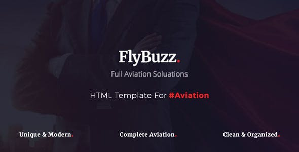 fly templates from themeforest