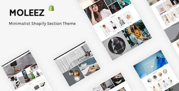 Shopify Themes From ThemeForest - Shopify website templates