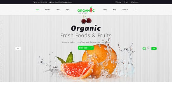 fruits and vegetables html website templates from themeforest