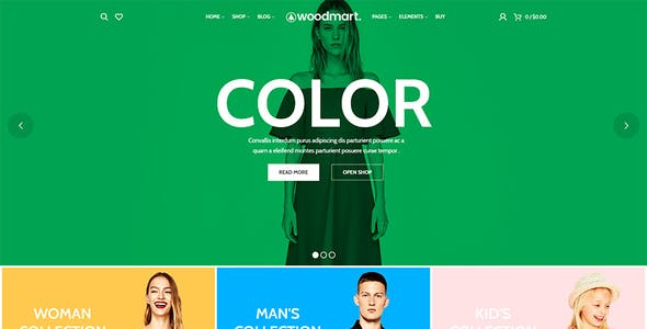 WordPress eCommerce Themes from ThemeForest