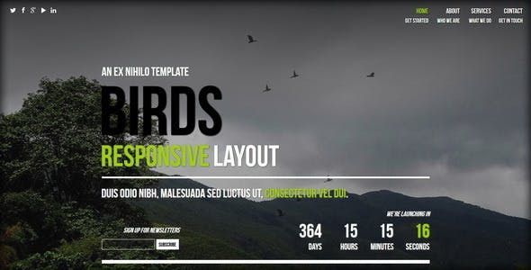 birds responsive coming soon page